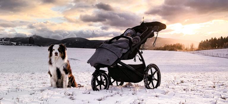 Thule Urban Glide 2 aneb lesem se psem a s dítětem